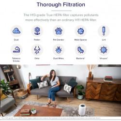 Kingston 16GB DataTraveler DT50 (USB 3.0) - kovový/zelený
