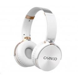 Xerox Papír Premium Never Tear PNT 95 A3 (125g/100 listů, A3)