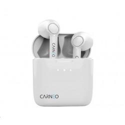 Xerox Papír Premium Never Tear PNT 95 SRA3 (125g/100 listů, SRA3)