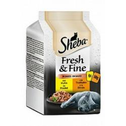 OSRAM žárovka LED Star PAR 16 230V 8W/827 GU10 36°