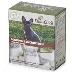 OSRAM žárovka LED Retrofit 230V filament non-DIM 7W/840 E27
