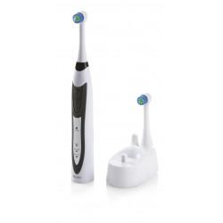 NVIDIA Quadro P620 2GB GDDR5, 4x miniDisplayPort 1.4, 2x adapter mDP->DP, PCIe 16x