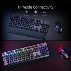 "LG MT IPS LCD 24"" 24BK55WY - IPS panel,16:10,1920x1200, 300cdm, D-sub, DVI, DP, USB hub, repro, pivot, výšk stav 130mm"